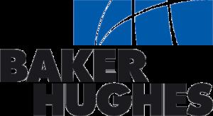 BHI logo